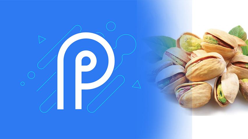 Android P Serisinin İsmi Pistachio(Antep Fıstığı) Mu Olacak?