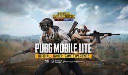 Giriş seviyesi telefonlar için PUBG Lite Geliyor!