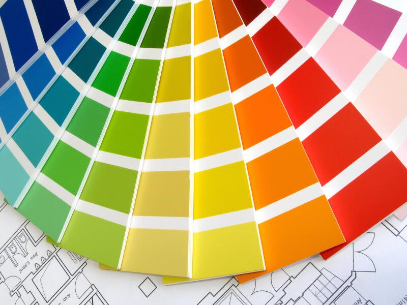 Renk bilimi nedir ve neden önemlidir?
