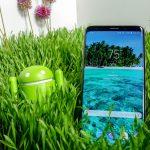 Galaxy Note 9 yeni bir renkte sızdırıldı