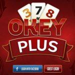 Facebook'da Okey Plus Seyirciye Açma