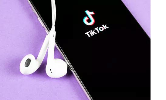 TikTok'tan Videoları İndirme