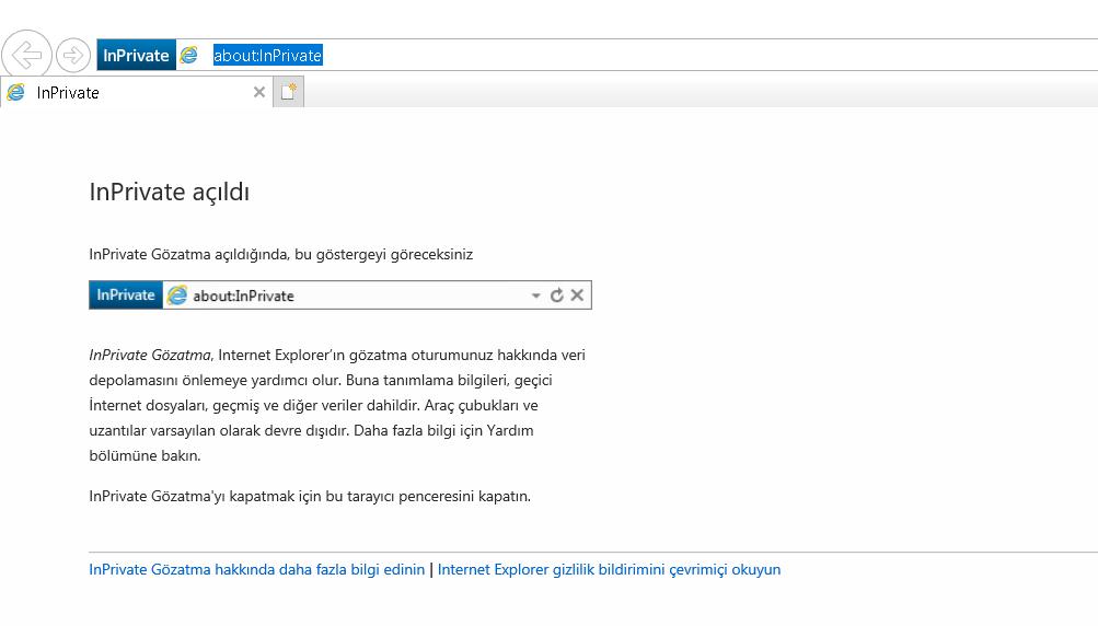 Internet Explorer Gizli Sekme Nasıl Açılır?
